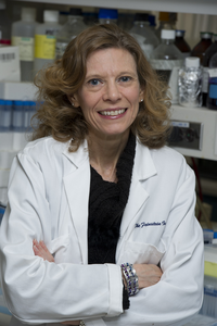 Christine N. Metz, PhD
